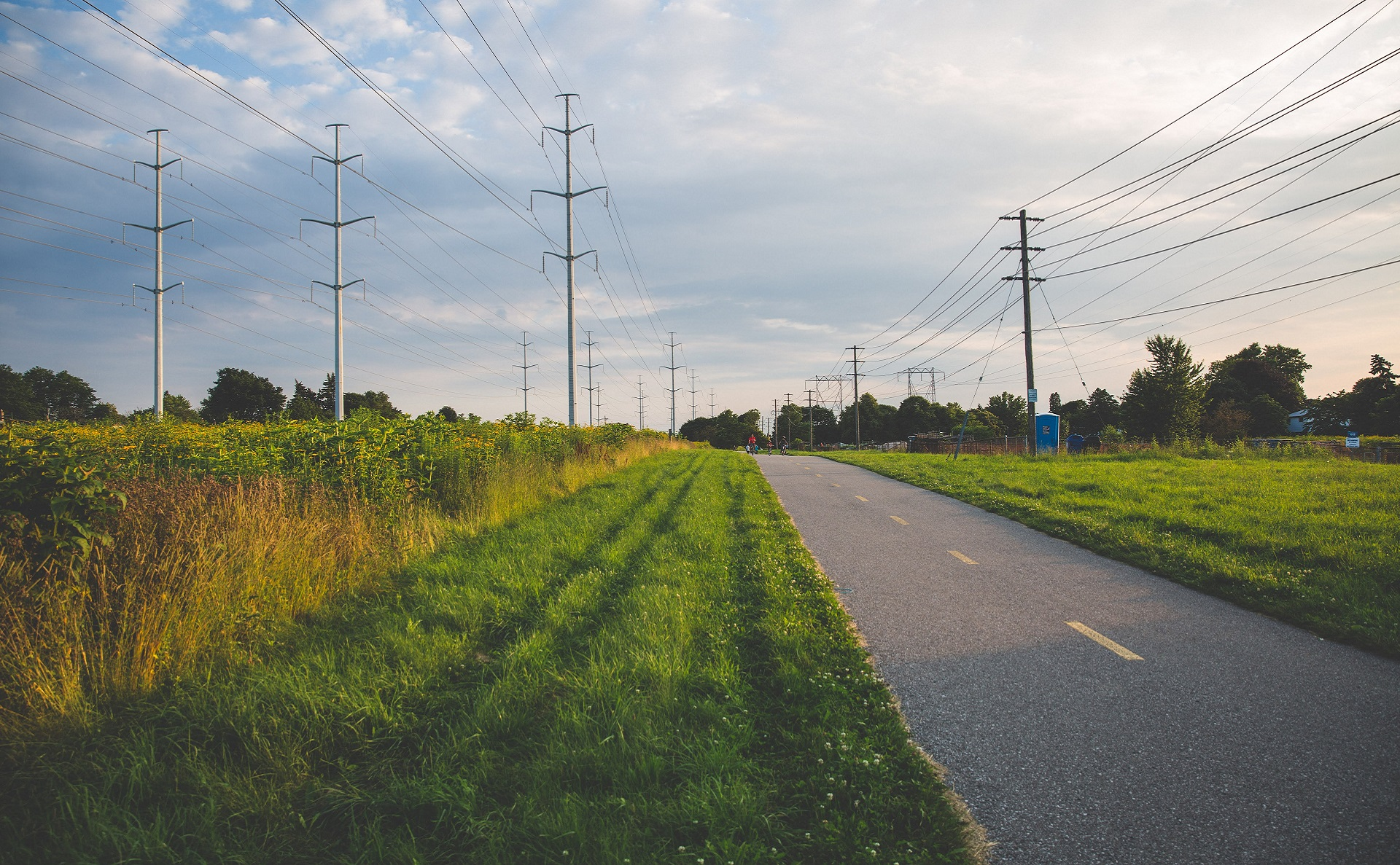 hydro corridor meadow at sunset