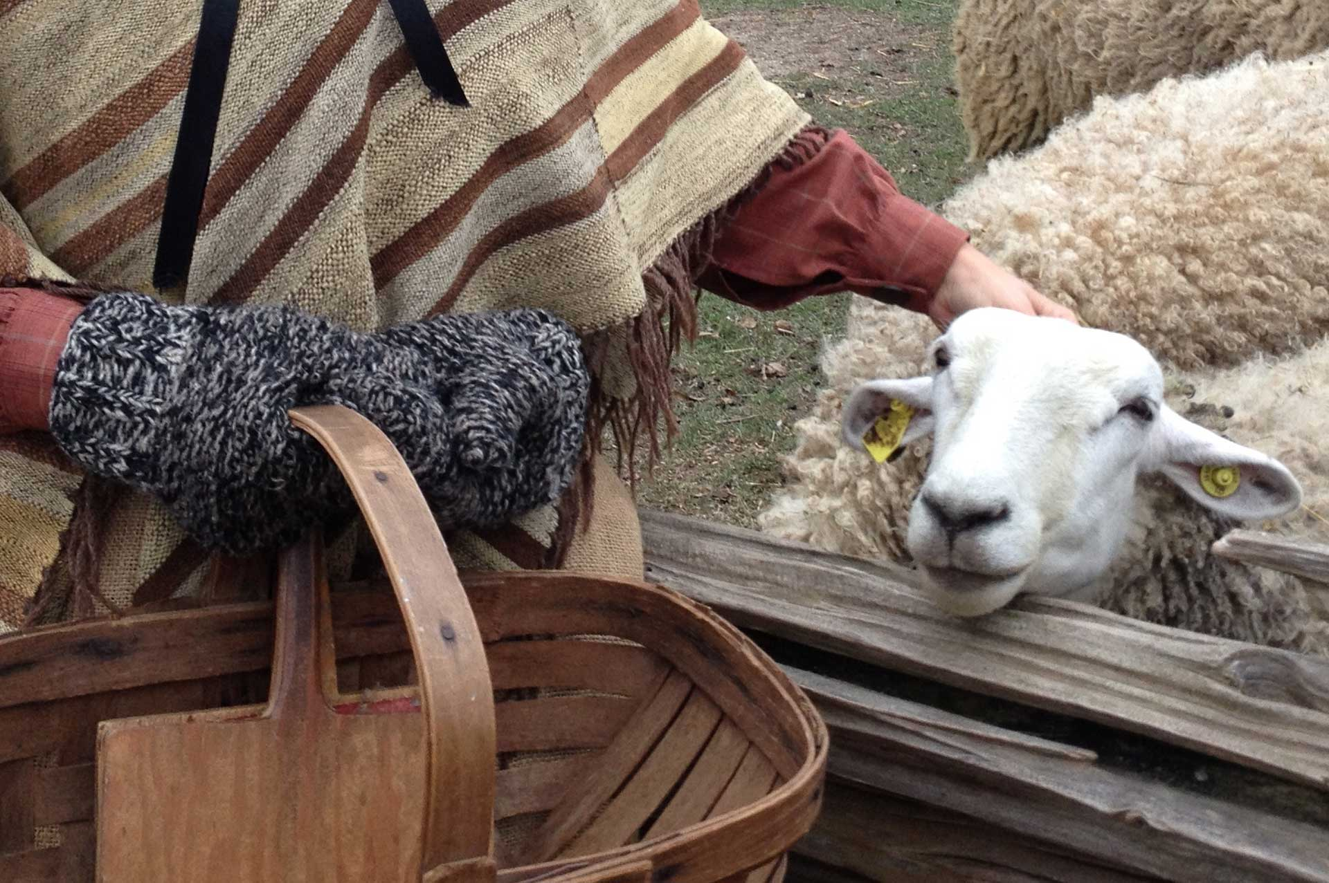 Pioneer woman with a sheep at Black Creek Pioneer Village
