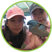 students visit Tommy Thompson Park bird research station