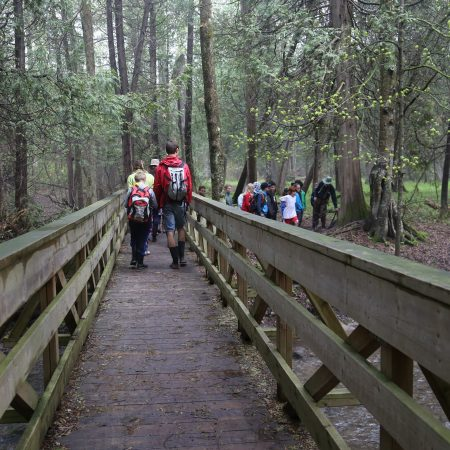 Environmental Leaders of Tomorrow students explore forest trail at Claremont Nature Centre