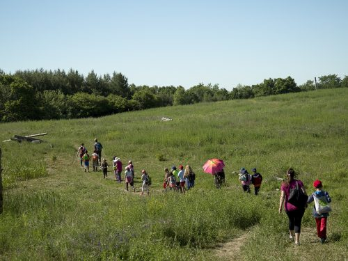 students explore conservation area