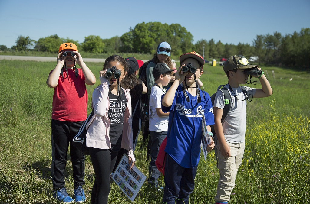 students take part in TRCA aquatic plants program