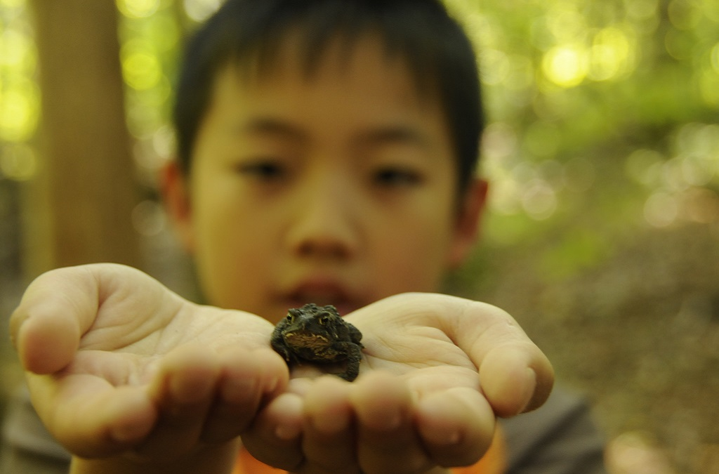 young boy takes part in TRCA education program at Claremont Nature Centre