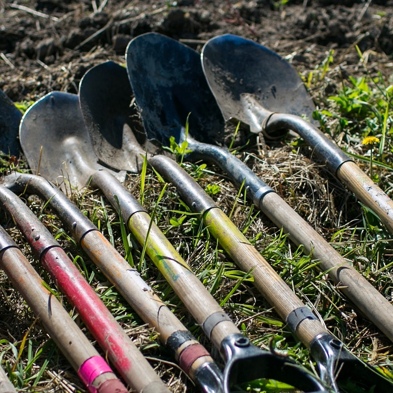 shovels lined up on the ground at TRCA tree planting event