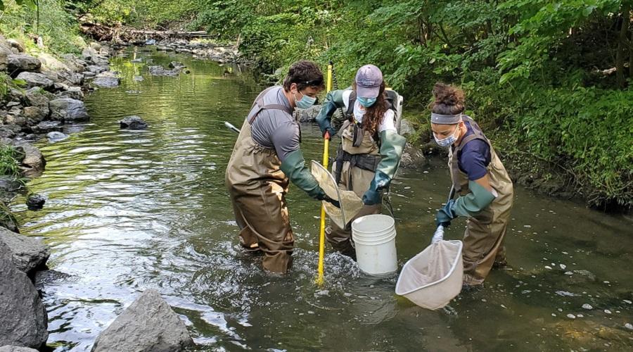 Aquatic Species Management