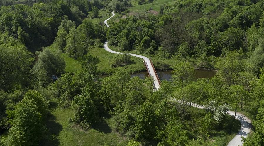 A trail through a natural area