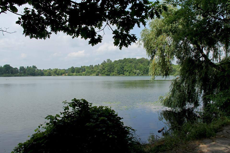 A view of a lake