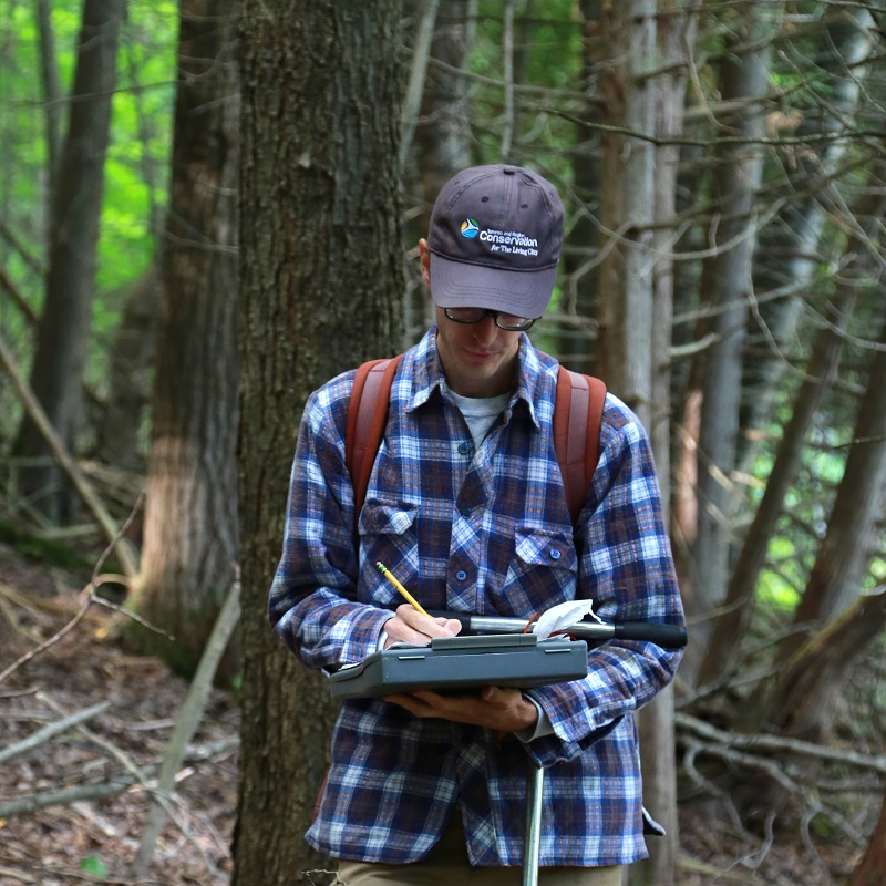 TRCA team member monitors local flora and fauna species in forest
